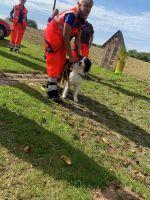 Rettungshundestaffel-5